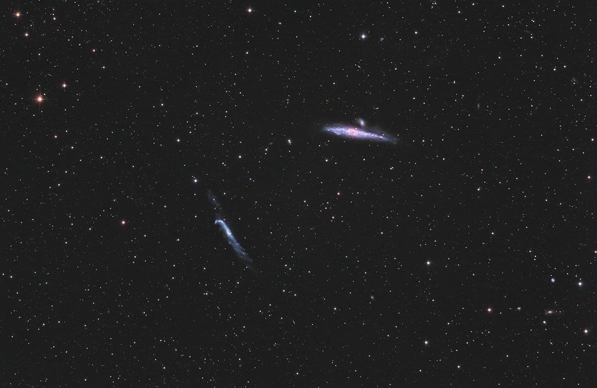 NGC4631 Walgalaxie